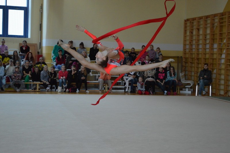 Спортивная школа художественная гимнастика москва